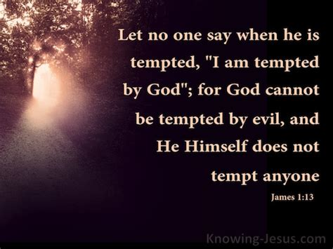 when i m tempted a promises of god novel volume 3 books 1 13 verse of the day