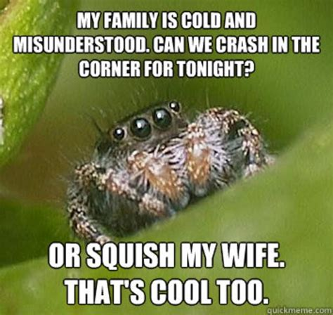 Shower Spider Meme - the real lucas the spider melissa mcewen medium