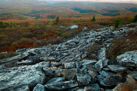 West Virginia Spruce Knob file autumn colors mountainside spruce knob west