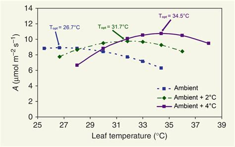 temperature response curve of rates of leaf respiratory co2 release r co2 science
