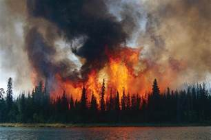 acres homes alaska wildfire grows to 6 500 acres homes evacuated