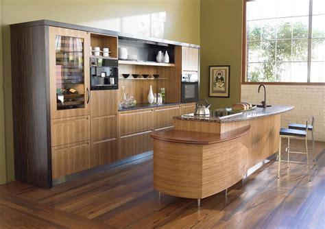 modern kitchen design 2013 latest restraints which can make your kitchen designs more