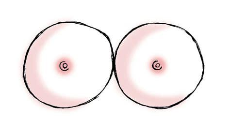 diversi tipi di seno tipi di seno pi 249 della misura conta la forma io donna