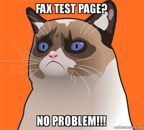 Cartoon Cat Memes - cartoon grumpy cat meme