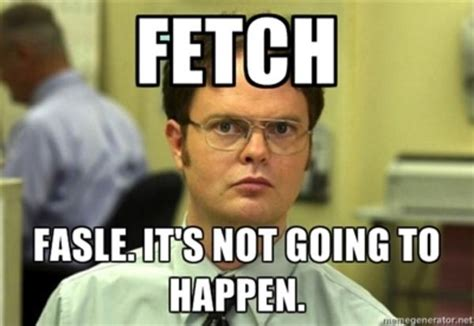 Stop Trying To Make Fetch Happen Meme - image 768911 stop trying to make fetch happen know