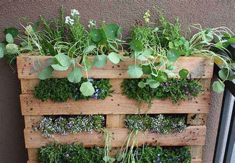 diy herb garden ideas wall garden design ideas diy projects for decorating small spaces with edible herbs