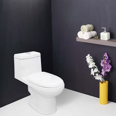 bathroom closets india buy essence wall mounted closet water closets online in