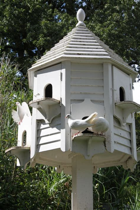 just lovely bird houses bird baths feeders