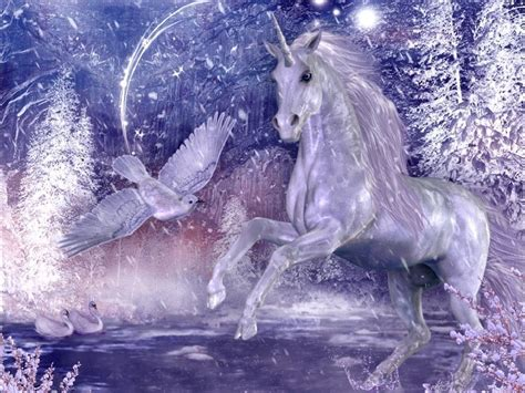 unicornios en imagenes unicornios im 225 genes im 225 genes taringa