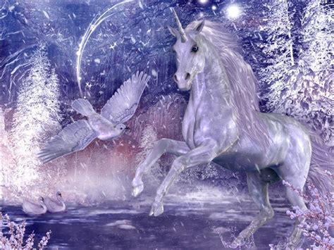 imagenes de unicornios magicos unicornios arte taringa