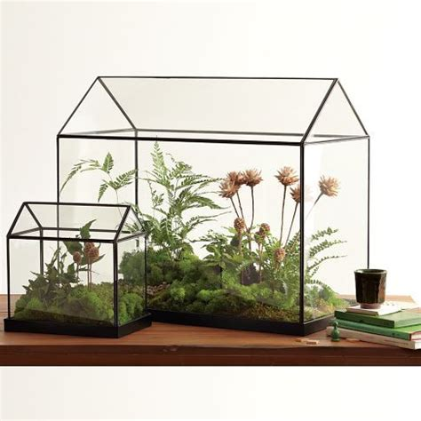 indoor greenhouse 25 best ideas about mini greenhouse on pinterest small