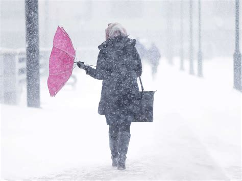 snowstorm    productive business insider