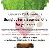 Doterra Oils For Dogs Skin Allergies  Dog &amp Puppy