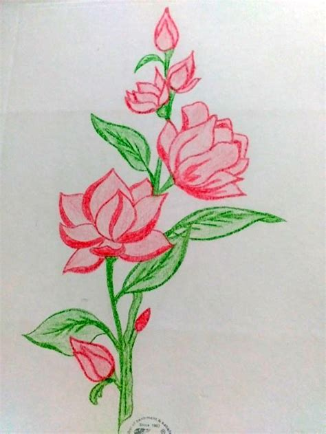 How To Draw With A Colour Pencil M De By Lakshmim De By Lakshmi Colour Drawing For