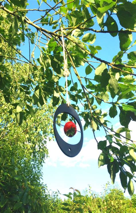 pick of the week eco bird feeder thrifty home