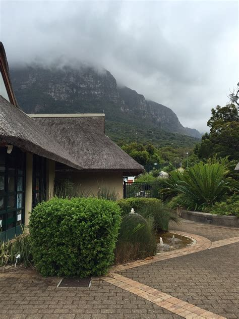 Southern Afro Southern Africa Travel And Tourism Kirstenbosch Botanical Gardens Entrance Fee