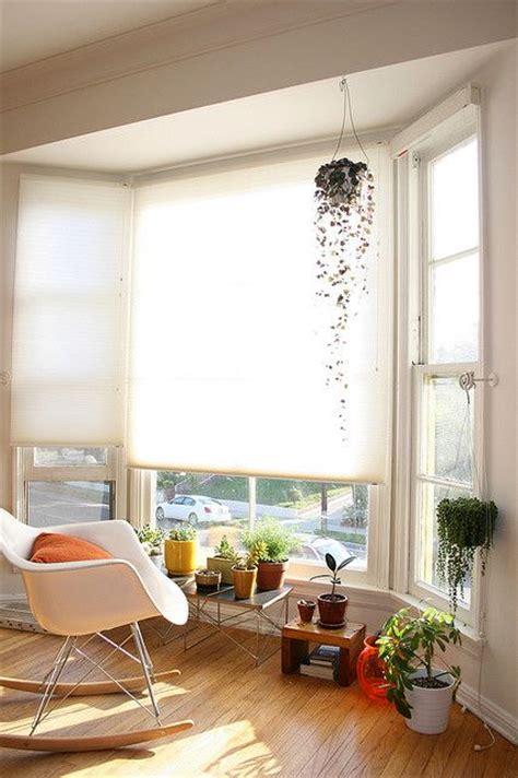 Indoor Plants Sunny Window Plants Hanging Plants And Window On