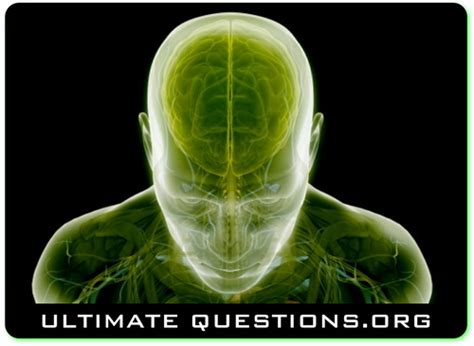 Ultimate Or Question Ultimate Questions Ultimateque