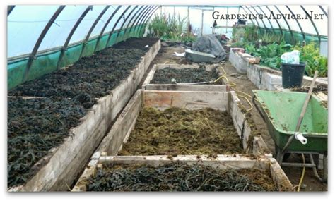 Easy To Build Raised Bed Garden Plans How To Fill A Raised Vegetable Garden Bed