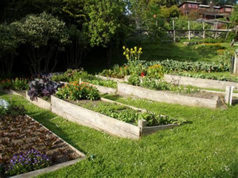 vegetable garden on slope growing vegetable gardens raised beds