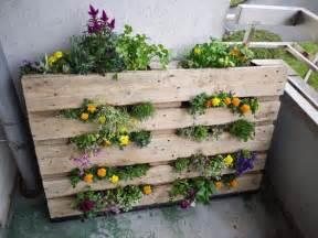 Ikea Mini Greenhouse riciclo creativo pallet 4 idee per il fai da te foto ecoo