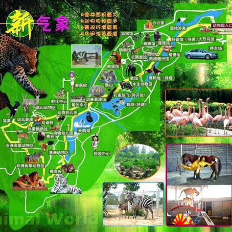 zoos shijiazhuang