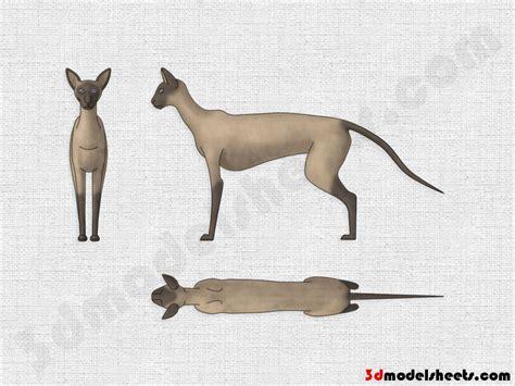 high resolution textures  animal blueprints model sheets