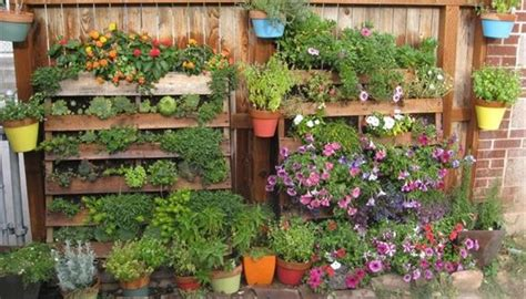 giardini verticali fai da te 4 esempi di giardino verticale fai da te milleunadonna