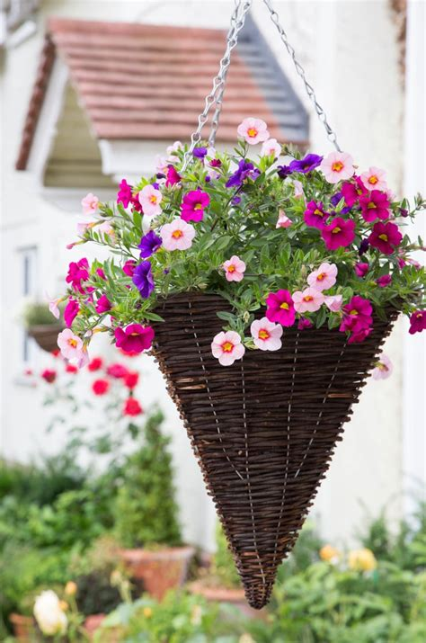 17 best images about hanging baskets on