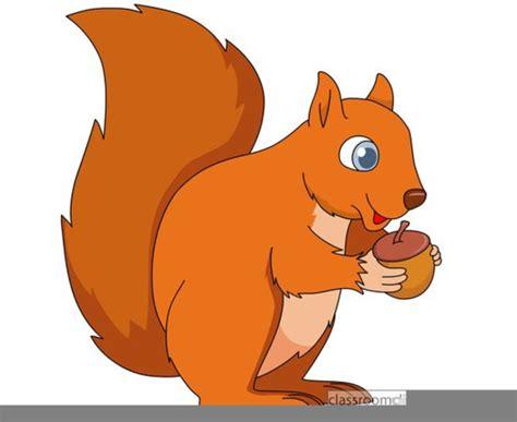 squirrel clip clipart acorns squirrels free images at clker