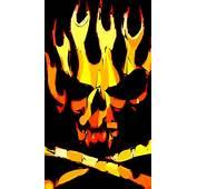 Funny Skull Pics Galaxy S5 Wallpaper