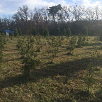 country loving christmas tree farm 11 photos christmas