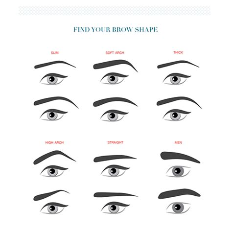 eyebrow in style 16 eyebrow diagrams that will explain everything to you