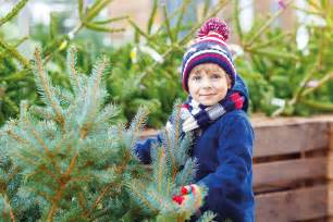 buy your christmas tree from the plant centre at compton