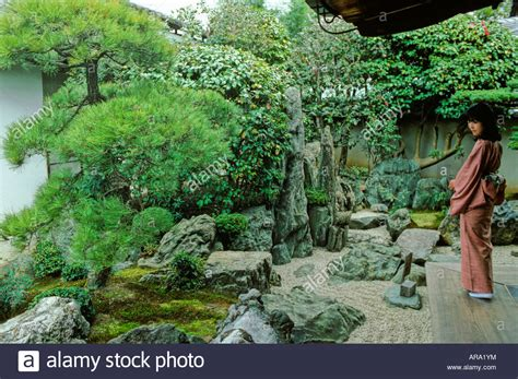 where can i buy moss for my garden 28 images the peach tree mad about moss the plant not