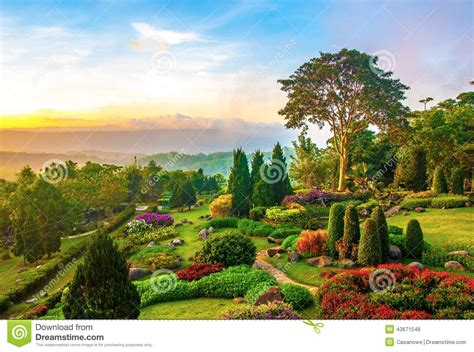 Garden On Beautiful Garden Of Colorful Flowers On Hill Stock Photo
