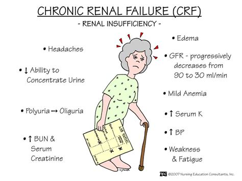 renal failure image detail for renal failure and renal failure nursing prognosis of kidney