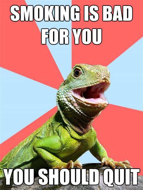 Dragon Memes - dragon memes 28 images 25 best memes about dungeons