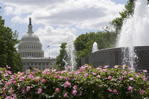 family vacation 5 places to visit in washington d c