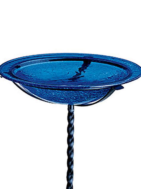 blue bird bath bird cages