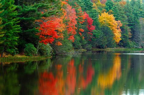 virginia state colors west virginia fall color map where is your favorite fall