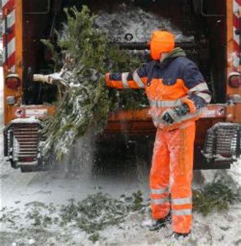 ausgediente weihnachtsb 228 ume in berlin werden abgeholt