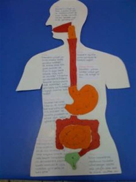 human crafts for human bulletin board preschool and kindergarten