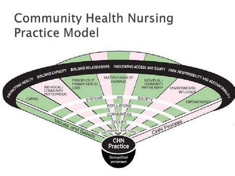 professinalism and issues in community health nursing
