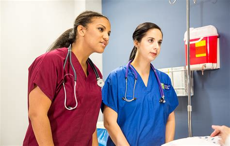 Rn Classes - associate of arts in nursing glendale career college