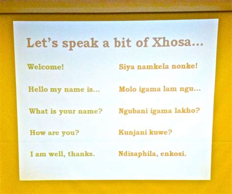online tutorial c net xhosa for beginners audiocourse demo free download and
