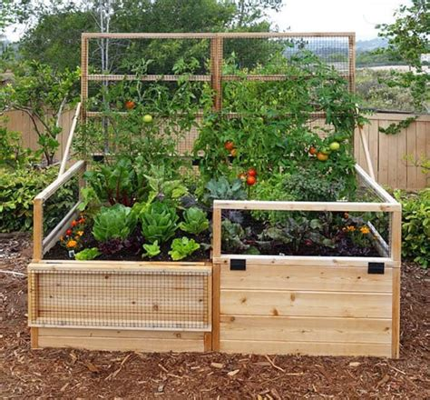 raised garden bed with fence raised bed vegetable garden fence www imgkid com the