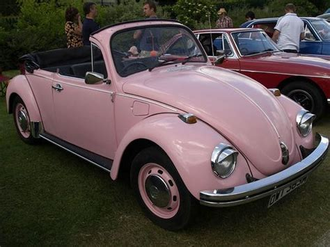 My Lovely Bettle pink beetle truck s car s pink