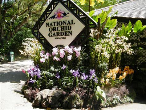 Botanic Garden Orchid Garden National Orchid Garden Singapore Botanic Gardens Thoughts On Air