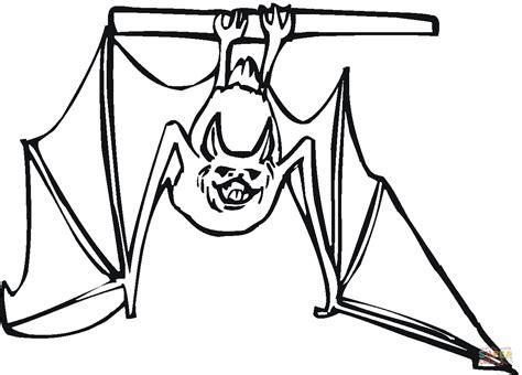 bat coloring page bat hanging coloring page free printable